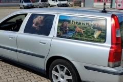 oklejanie pojazdów moyan-bok